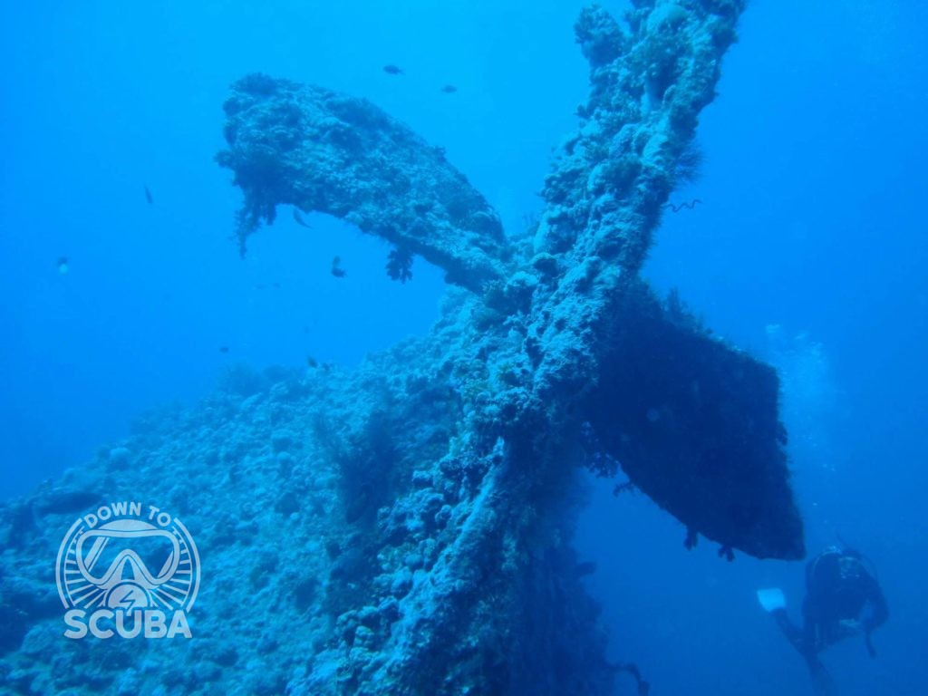 Diving in Sharm El Sheikh, at the Dunraven Wreck