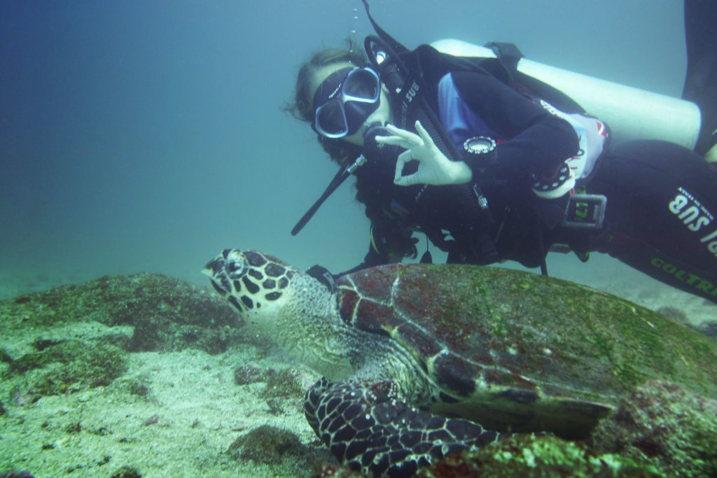 A scuba diver with a turtle in the Catalina Islands.