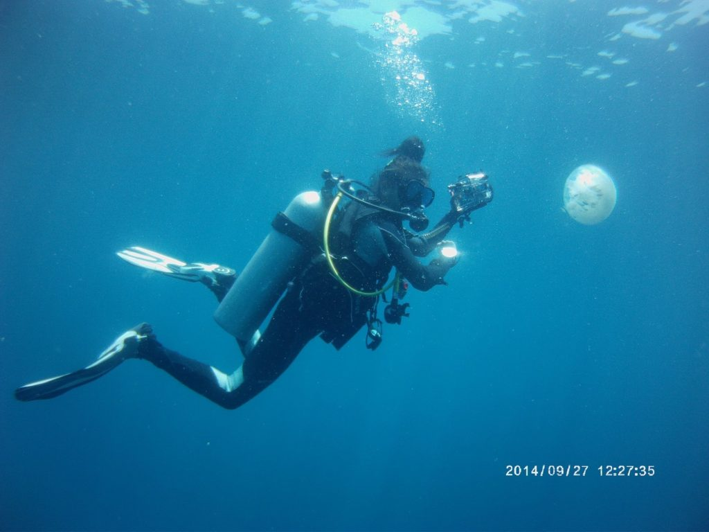Emma getting into underwater photography as a divemaster trainee with a jellyfish