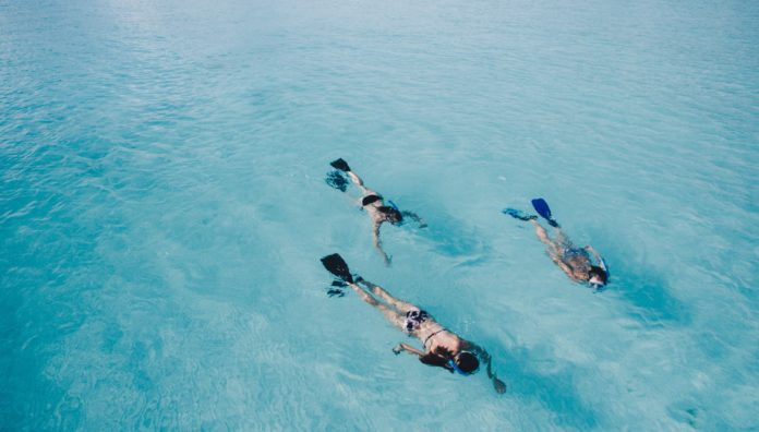 Three snorkelers swimming over sand. Is sand fish poop?