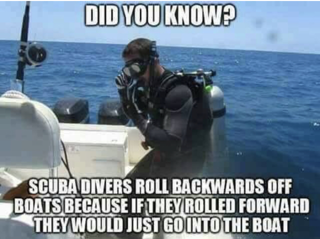 Why Do Scuba Divers Dive Backwards