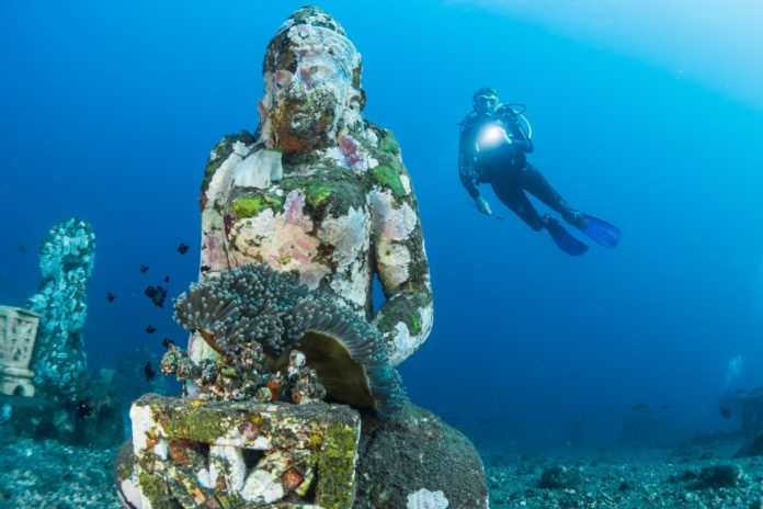 Learn how to scuba dive like this scuba diver with a statue and coral