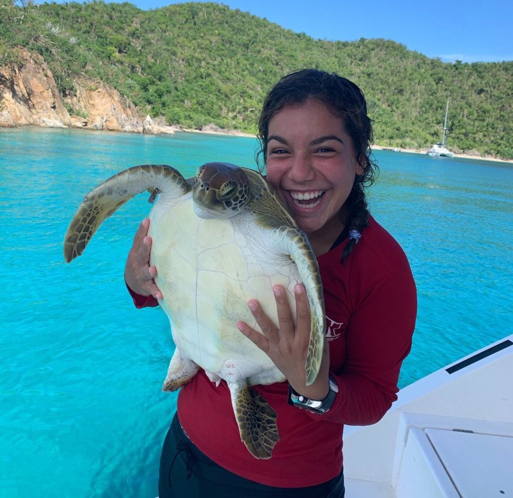 Anna is a marine science teacher volunteering with turtles