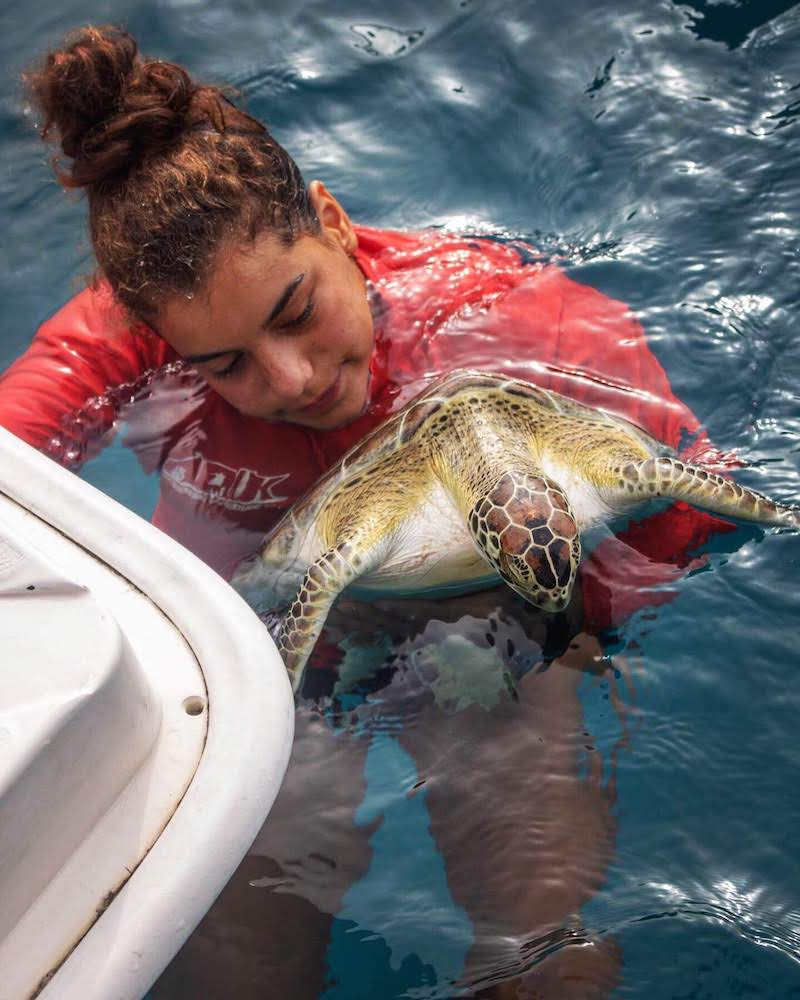 Marine science teacher releasing a turtle back into the ocean
