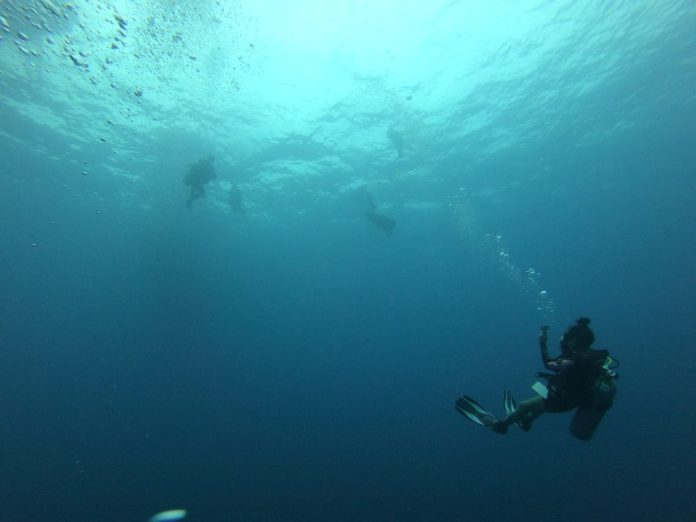 My instructor tips for scuba diving for beginners.